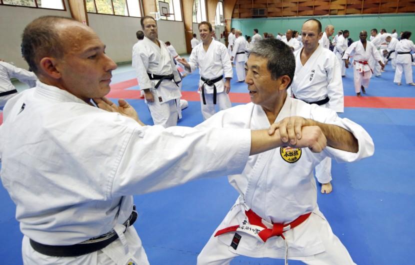 Le professeur Lionel lors du Stage des experts japonais